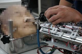 4mm 굵기의 가느다란 내시경과 로봇팔이 코를 통해 뇌까지 도달한다. - 이우상 기자 idol@donga.com 제공